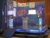 prezentare-produs-januvia-wattech-systems